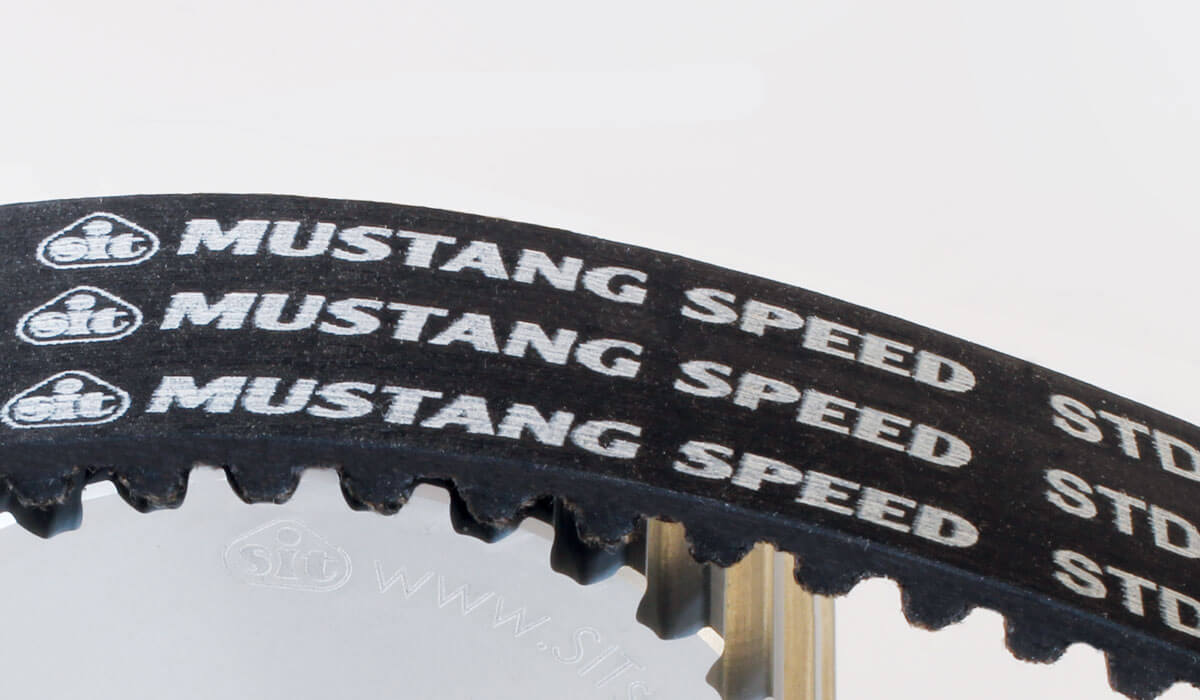 Trasmissione dentata in gomma Sit Mustang Speed STD
